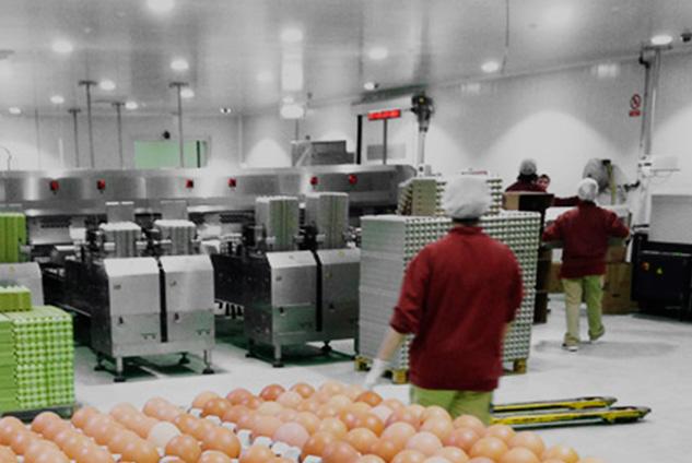 Huevos Velasco